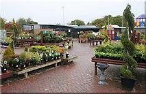 NJ3558 : Christies Garden Centre, Fochabers by Richard Sutcliffe
