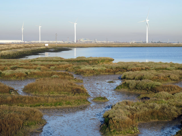 The eastern edge of Chetney Marshes by Long Reach, The Swale (2)