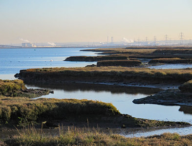 TQ8971 : The eastern edge of Chetney Marshes by Long Reach, The Swale (3) by Mike Quinn