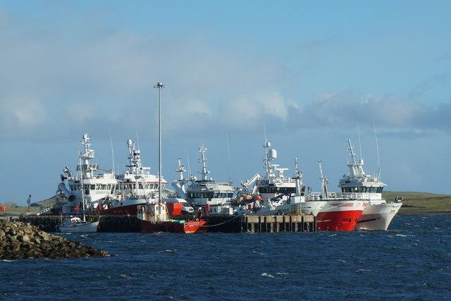 Five Norwegian fishing boats at Baltasound pier