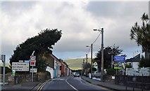 Q4401 : Slea Head Rd, R559 by N Chadwick