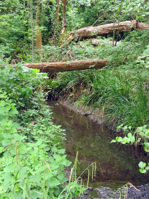 Boundary Brook near Lye Valley
