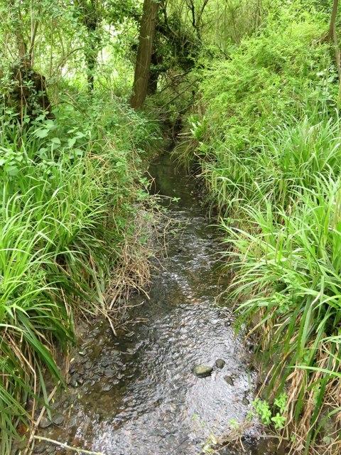 Lye Brook