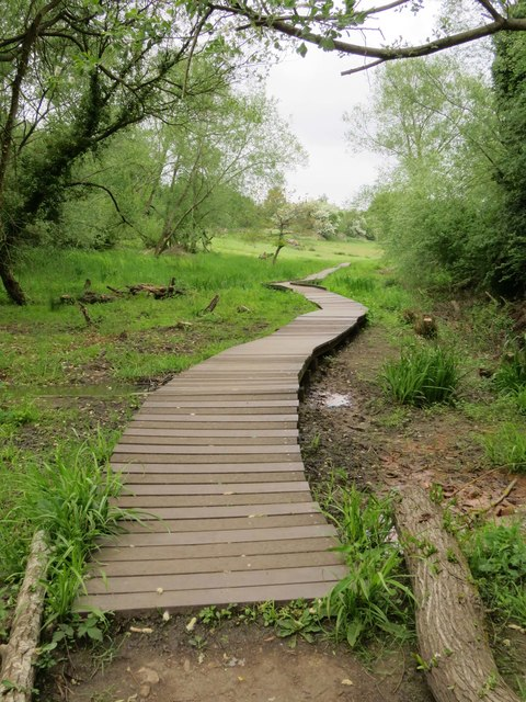 The raised path through Lye Valley Nature Reserve