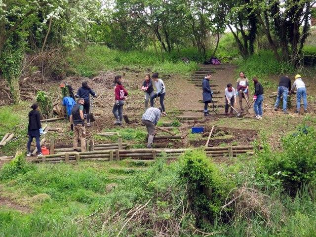Volunteers replacing some steps in Lye Valley Nature Reserve