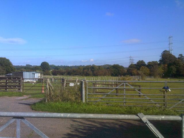 Gate Scene