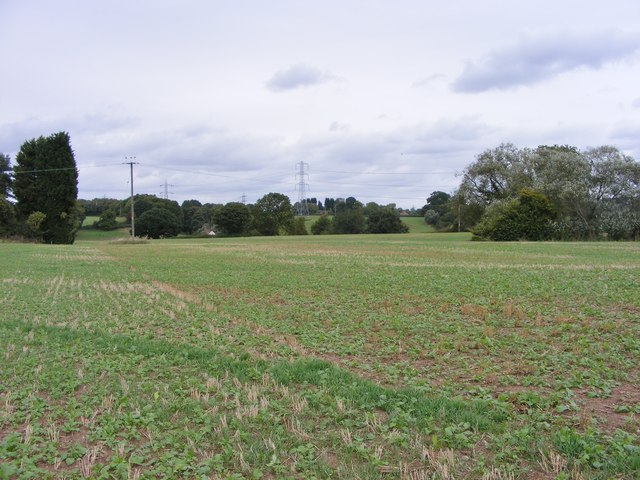 Trysull Field Path Scene