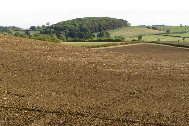 Ploughed field on the way to Little Brington
