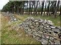 SK1686 : Broken wall below Wooler Knoll by Graham Hogg