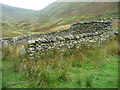 NY4314 : Walling within the complex sheepfold, Ramps Gill by Christine Johnstone