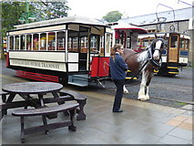 SC4384 : Horse tram No 1 at Laxey by Dr Neil Clifton