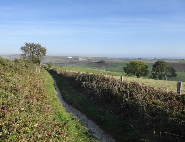 Path on Steyning Downs