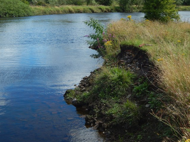 River bank with bricks and clinker