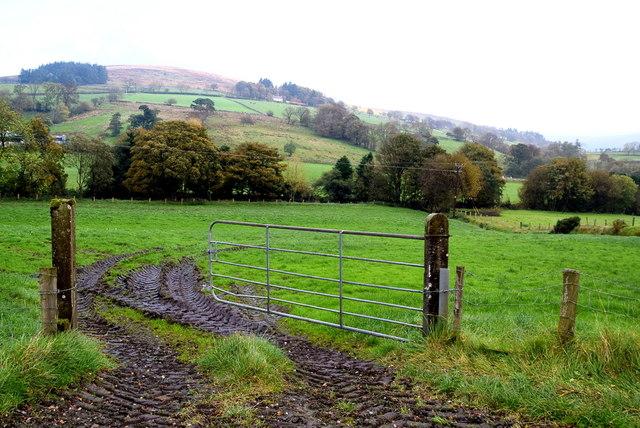 Muddy entrance to field, Upper Landahussy