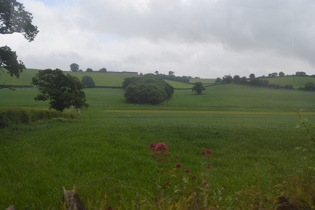 Sheepham Brook Valley