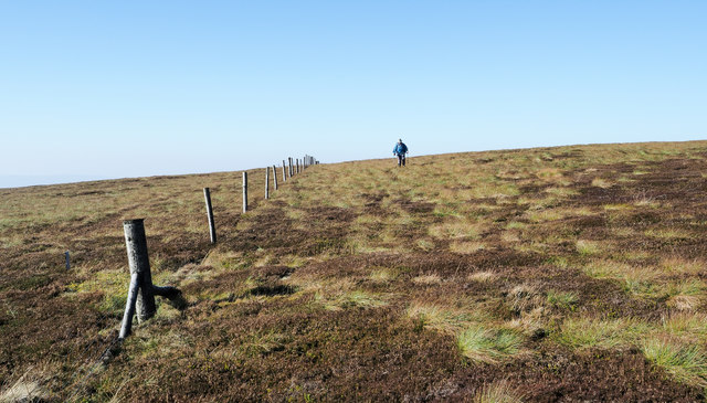 Fence on south side of summit of Rogan's Seat