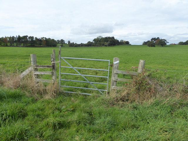 Gate in the field edge