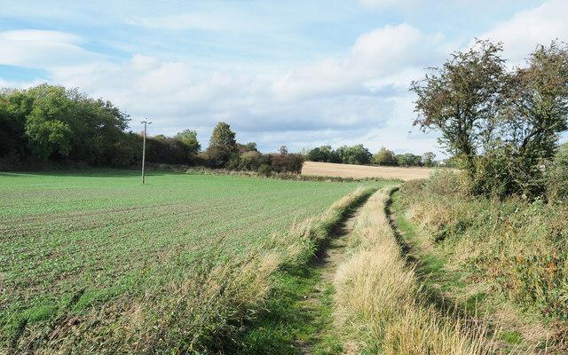Farm road with public footpath