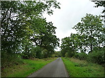 NY7213 : Road heading north-west from Bleatarn by Christine Johnstone