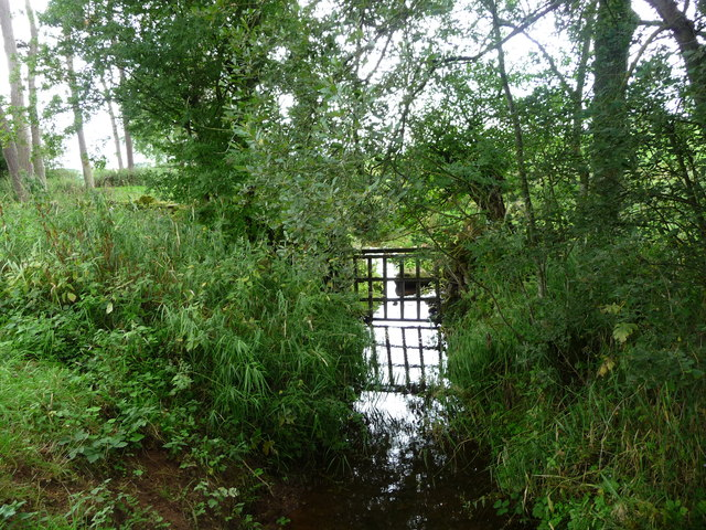 Bleatarn's issue- and spring-fed stream