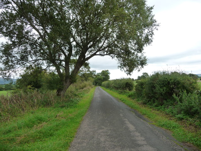 Road heading east to Little Musgrave