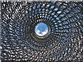 """TQ1877 : Looking up - inside """"The Hive"""" at Kew Gardens by Neil Theasby"""