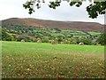 SO1428 : Mynydd Llangorse by Philip Halling