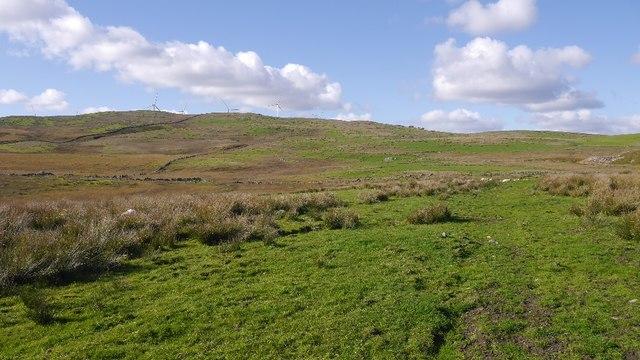 Rough grazing, Monybuie