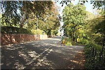 NY4057 : Junction of Brampton Road and the minor through Rickerby Park by Graham Robson