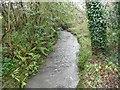 TQ0913 : River Stor: Downstream of the Chantry Lane bridge by Nigel Cox