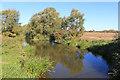 SP5111 : River Cherwell at Sparsey Bridge by Des Blenkinsopp