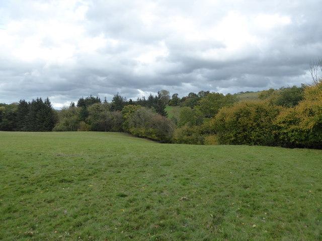 Path at the field edge