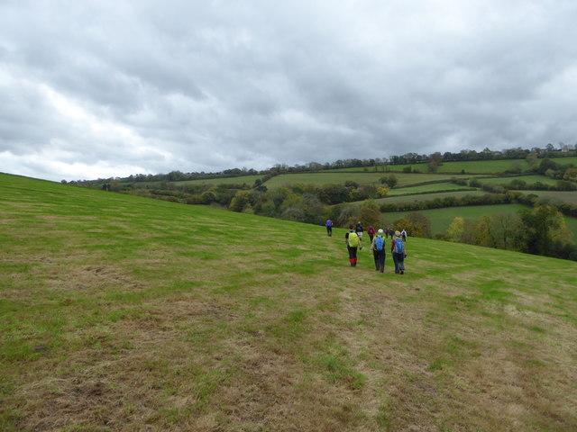 Fields between Pentre-cwm and Shepherdswhim farms near Bishops Castle
