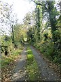 N5470 : Tree-lined country road at Balnavine by Oliver Dixon