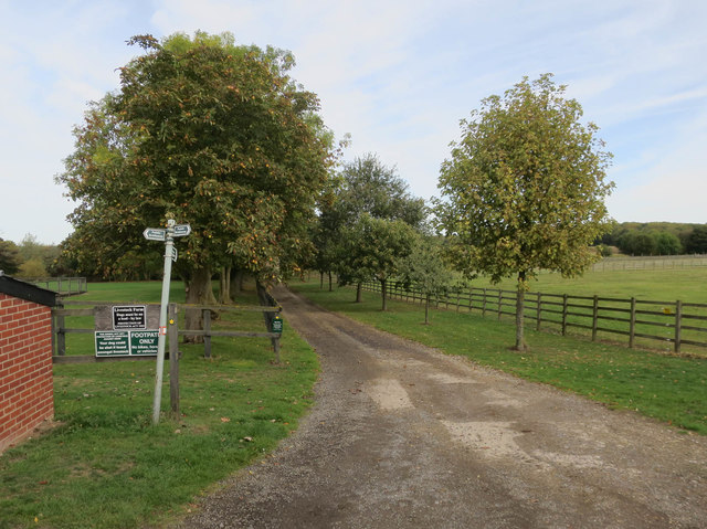 Footpath to Waresley Wood