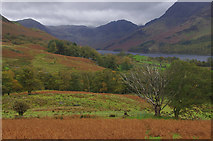 NY1717 : Above Buttermere village by Ian Taylor