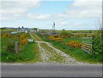 Q9403 : Farm track off the N23, Farranfore by Humphrey Bolton