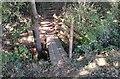 SU7838 : Footbridge over stream. by John P Reeves