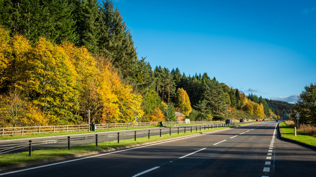 A9 and woods in autumnal garb