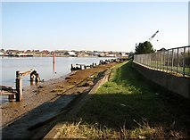 TG5107 : Flood wall beside the River Yare by Evelyn Simak