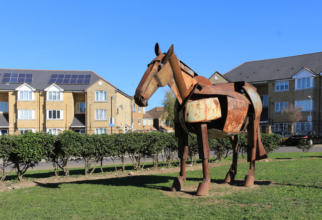 Horse on the Lawn, Montagu Road