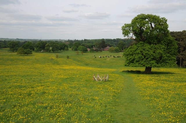 Shugborough Park