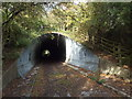 TQ5351 : Tunnel beneath the A21 near Sevenoaks by Malc McDonald