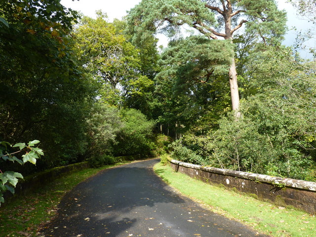 Driveway into Brodick Castle