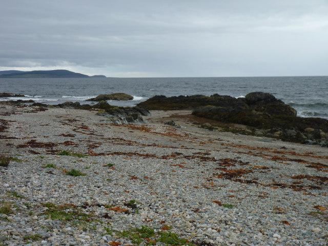 Stones. rocks and seaweed