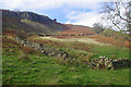 NY3121 : East side of High Rigg by Ian Taylor