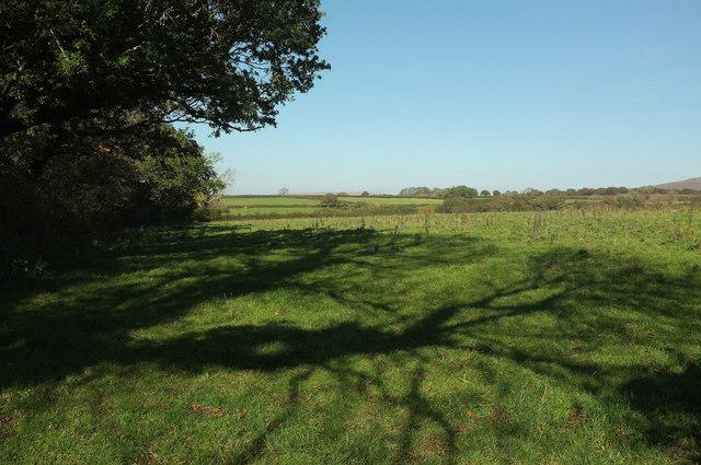 Field near Easten Bowtan Farm