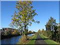 O1337 : The Royal Canal near Broombridge by Gareth James