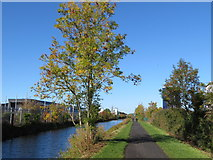 O1337 : The Royal Canal near Broombridge by Gareth James