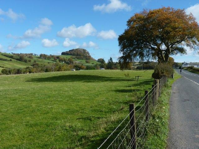 Fields alongside the A71